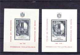 Belgique - Errinophilie 74  - 2 Blocs Avec Impression Différentes - Texte Plus Grand - Sans Gomme - Erinnophilie