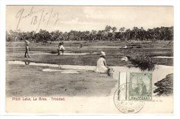 TRINIDAD - Pitch Lake, La Brea - Ed. Muir, Marshall & Co. - Trinidad