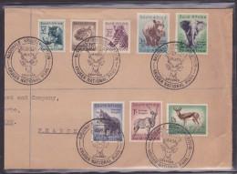 Afrique Du Sud - Lettre - Afrique Du Sud (1961-...)