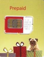 *INDIA - VODAFONE* -  Scheda GSM NUOVA (MINT) (mini Card) - India