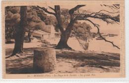 BORMES LES MIMOSAS - Plage De La Favière - Les Grands Pins- Bateaux - Bormes-les-Mimosas