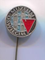 OSWIECIM WW2, Nazi Concentration Camp  Poland, Pin Badge - Villes