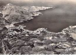 66 BANYULS - USINES PAULILLES Vue Aérienne - Jolie CPSM Dentelée Noir Et Blanc GF - Pyrenées Orientales - Banyuls Sur Mer