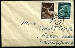 """Österreich,Austria 1960 Bedarfsbrief /Cover Mit Michel Nr.1064/65""""Wildschwein,Rotwild""""  1 Beleg - Animalez De Caza"""