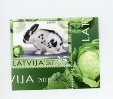 Lapin-Letonie-1 Valeur***MNH - Lapins