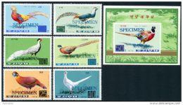 Korea 1976, SC #1461-67, 6V+S/S, Specimen, Pheasants, Bird - Altri