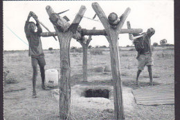 Namibia, Danish PPC Folkekirkens Nødhjælp / Spejderhjælpen Getting Water At The Well (2 Scans) - Namibia