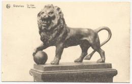 Waterloo Lion Cockerill Seraing - Lions