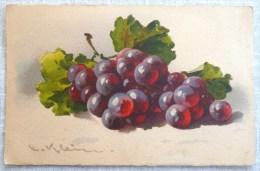 Litho Illustrateur KLEIN  Jounok N° 235 Nature Morte FRUIT FRUITS Grappe De Raisins Raisin Noir - Klein, Catharina