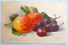 Litho Illustrateur Signé C KLEIN  Jounok N° 236 Nature Morte FRUIT FRUITS  Peche Peches Et Cerises Timbre 1908 - Klein, Catharina
