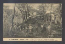 Lukafu. *Congo Belge - Attaque D´une Termitière Sur La Nouvelle Route De Lukafu* Entero Postal. - Postales