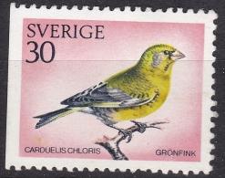 BIRD VOGEL Oiseau Greenfinch Carduelus Chloris Grünfink Verdier Verdone Finchada Verde SWEDEN 1970 MI 695 Dl Slania - Songbirds & Tree Dwellers
