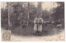 LANDES  - Berger Landais Tricotant. Rare. - Unclassified