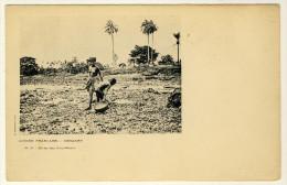 Conakry -  Pêche Des Coquillages   ( Pêcheuse Seins Nus.....) - Afrique Du Sud, Est, Ouest