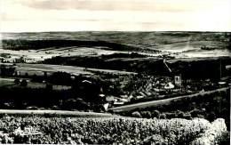 Belle Carte Photo     - Irancy  -  Vue Panoramique Prise Au Téleobjectif         D1100 - Andere Gemeenten