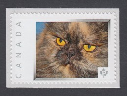 PERSIAN CAT, TURTLE THREE COLOR  Picture Postage MNH  Stamp,  Canada 2014 [p8fa5/2] - Domestic Cats