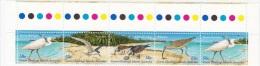 D] Bande De 5 Timbres ** Strip Of 5 Stamps ** Îles Cocos Islands Oiseau Bird - Cocos (Keeling) Islands