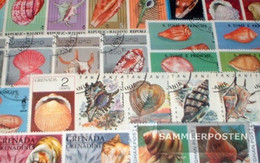 Motives 50 Different Mussels Stamps - Coneshells