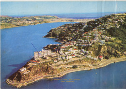 Point Jerningham Wellington Written On The Back 1972 Bb - Nuova Zelanda