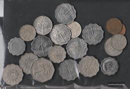 Iraq 100 Grams Münzkiloware - Coins & Banknotes