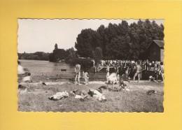 * CPSM Photo..dépt 77..DAMPMART  :   Baignade De Dampmart - Montévrain   : Voir Les 2 Scans - Autres Communes