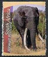 (cl 10 - P50) Afrique Du Sud ** PA N° 129 (ref. Michel Au Dos) - Elephants - - Afrique Du Sud (1961-...)