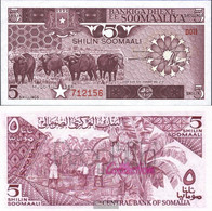 Somalia 31b Uncirculated 1986 5 Shilling Büffel - Somalia