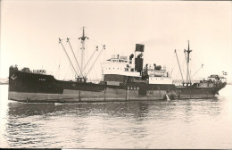 "Photo Bateau Navire "" Dago "" Ex Elmpart Ex Brodsworth 1917 Brys Glasgow  Danemark  Marine Marchande Mer Ship Baltica - Bateaux"