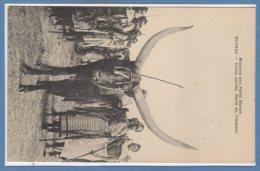AFRIQUE  --  RUANDA - Vache Sacrée , Reine Du Troupeau - Ruanda-Urundi