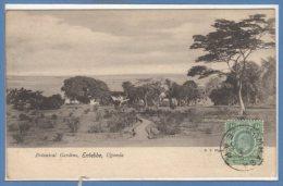 AFRIQUE  -- OUGANDA -- Batanical Gardens , Entebbe - Ouganda