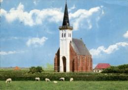 Nederland  -  Texel - Kirche Von Den Hoorn - Non Classés