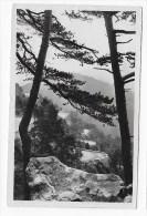 (RECTO / VERSO) PEIRA CAVA EN 1948 - ROUTE DU COL DE L' ORME- PLI ANGLE HAUT A DROITE - FORMAT CPA - Autres Communes