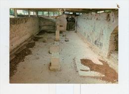 URBISAGLIA,Criptoportico Romano-NV - Macerata