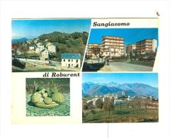 SANGIACOMO DI ROBURENT,vedute-NV- - Cuneo