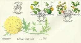 South Africa Bophuthatswana 1991 Wild Fruits FDC - Bophuthatswana