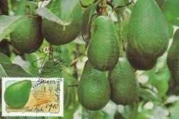 South Africa 1988 Export Fruits,Papaya, Maximum Card - Storia Postale