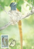 Venda 1984 Migratory Birds,Terpisiphone,Maximum Card - Venda