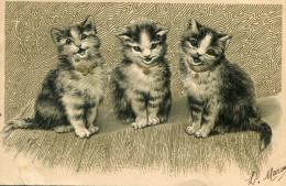 CHAT(CARTE GAUFREE) - Katten