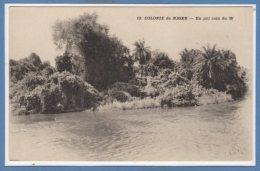 AFRIQUE  -- NIGER -- Un Joli Coin Du W - Niger