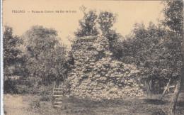 Pesches - Ruines Du Château Des Duc De Croÿs (Desaix, Edit. Antoine) - Couvin