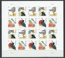 USA. Scott # 4991-94 MNH Sheet Of 20. Coastal Birds Postcard Rate 2015 - Hojas Completas