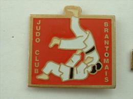 Pin´s JUDO CLUB BRANTOMAIS - Judo