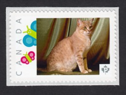 NEW ! AUSTRALIAN MIST,  DOMESTIC CAT   Picture Postage MNH Stamp,  Canada 2015 [p15/6ct5/3] - Domestic Cats