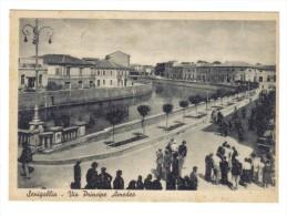 Senigallia Via Principe Amedeo Non Viaggiata   COD.C.1890 - Senigallia
