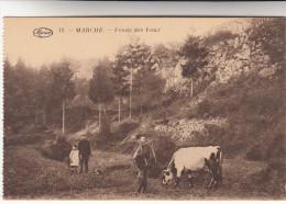 Marche, Fonds Des Vaux (pk19872) - Marche-en-Famenne