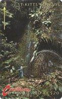 St. Kitts & Nevis - Waterfall - 5CSKA - 1991, 10.250ex, Used