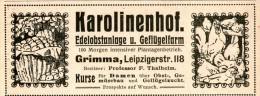 Original-Werbung/Anzeige 1914 - KAROLINENHOF GRIMMA / EDELOBSTANLAGE UND GEFLÜGELFARM - Ca. 110 X 45 M - Werbung