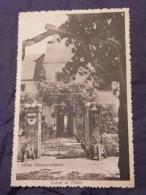 Luxembourg Hôtel Simmerschmelz Entrée De L'HôtelCampill Krier - Cartes Postales