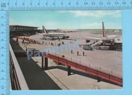 Avion Airplane ( Aeroport International De Rome Leonardo Da Vinci ) 2 Scans - 1946-....: Modern Era