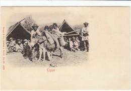 'Tigani' Romani Gypsy Families, C1900s Vintage Romanian Postcard - Europe